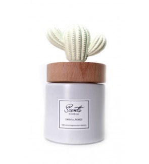 Scents Oriental Forest Cactus Diffuser 100ml