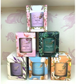 Scented Candle (BUY 2 FREE 1)