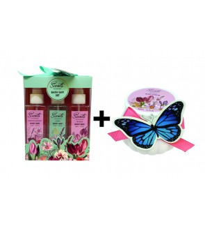Body Mist + Body Lotion Set